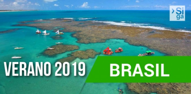 V19-BRASIL